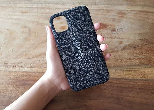 coque iphone serie 11 mdg